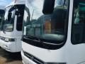 buses-small-0