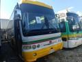 buses-small-1