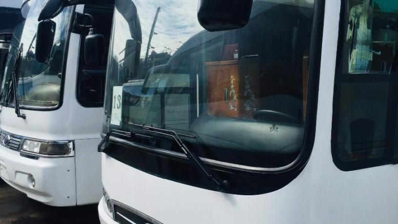 buses-big-0