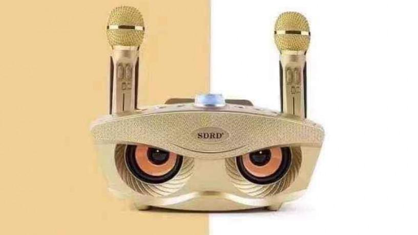 original-sdrd-karaoke-big-0