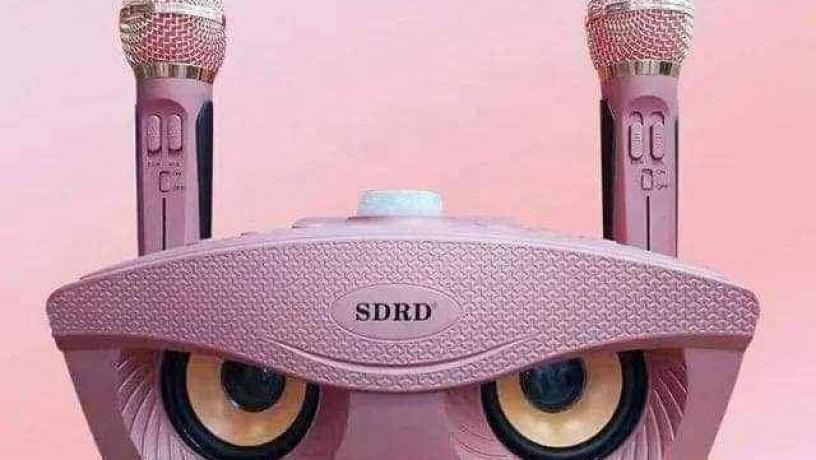 original-sdrd-karaoke-big-1